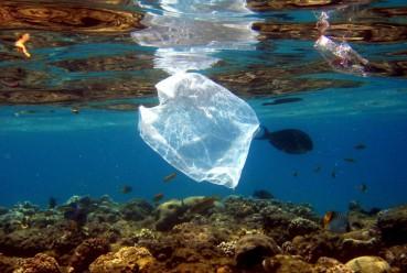 2-residuos-plasticos-en-el-mar